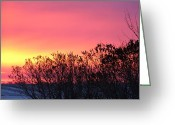 Fine_art Greeting Cards - Beauty In The Morning Greeting Card by Christy Patino