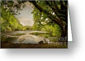 Co Galway Greeting Cards - Beauty Of Ireland Greeting Card by Cheryl Davis