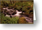 Abbot Greeting Cards - Becky Falls on Dartmoors National Park Greeting Card by Jay Lethbridge