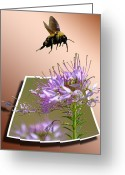 Free Mixed Media Greeting Cards - Bee Free Greeting Card by Shane Bechler