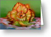Transformative Art Greeting Cards - Begonia Greeting Card by Lisa Redfern