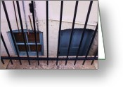 Anna Villarreal Garbis Greeting Cards - Behind Bars Greeting Card by Anna Villarreal Garbis