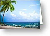 Slr Greeting Cards - Belize Private Island Beach Greeting Card by Ryan Kelly