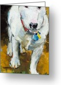 Bull Terrier Greeting Cards - Belle Greeting Card by Claire Kayser