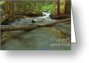  Beve Brown-clark Greeting Cards - Below Lower Granite Falls Greeting Card by Reflective Moments  Photography and Digital Art Images