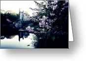 Scenery Greeting Cards - Belvedere Castle Greeting Card by Ariane Moshayedi