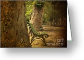 Empty Park Bench Greeting Cards - Bench in a park Greeting Card by Bernard Jaubert