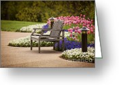 Empty Park Bench Greeting Cards - Bench In The Park Greeting Card by Cheryl Davis