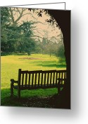 Empty Park Bench Greeting Cards - Bench under a tree Greeting Card by Jasna Buncic