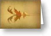 Lay Greeting Cards - Beneath The Falling Leaves Greeting Card by Evelina Kremsdorf
