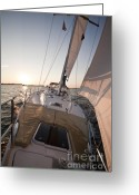 Sails Digital Art Greeting Cards - Beneteau 49 Sailing Yacht close hauled charleston sunset Sailboat Greeting Card by Dustin K Ryan