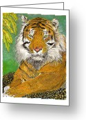 Most Mixed Media Greeting Cards - Bengal Tiger with green eyes Greeting Card by Jack Pumphrey