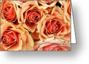 Kg Greeting Cards - Bergen Roses Greeting Card by KG Thienemann