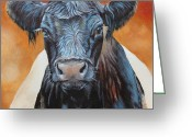 Galloway Greeting Cards - Bertha Beltie Greeting Card by Laura Carey