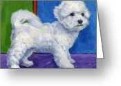 Bichon Greeting Cards - Bichon Frise Standing Sideways Greeting Card by Dottie Dracos