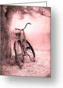 Old Tree Greeting Cards - Bicycle in Pink Greeting Card by Sophie Vigneault