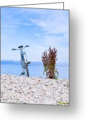 Take A View Greeting Cards - Bicycle on the beach on Gotland Sweden Greeting Card by Kathleen Smith