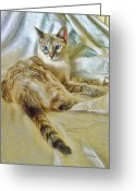 Siamese Photo Greeting Cards - Big Blue Eyes Greeting Card by Kenny Francis