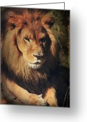 Mane Greeting Cards - Big Boy Greeting Card by Laurie Search