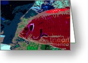 Sea Life Digital Art Greeting Cards - Big Red Greeting Card by David Lee Thompson