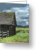 Dilapidated Greeting Cards - Big Sky Cabin Greeting Card by Sandra Bronstein