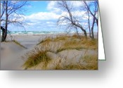 Beach Grass Greeting Cards - Big Waves on Lake Michigan Greeting Card by Michelle Calkins
