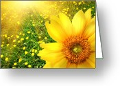 Blossom Digital Art Greeting Cards - Big yellow sunflower  Greeting Card by Sandra Cunningham