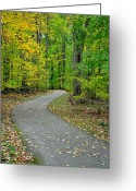 Jogging Photo Greeting Cards - Bike Path Greeting Card by Robert Harmon