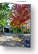 Indiana Autumn Greeting Cards - Billie Creek  Greeting Card by Brittany H