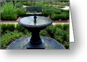 Franklin Park Conservatory Digital Art Greeting Cards - Bird Bath Greeting Card by Mindy Newman
