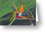 Kingston Greeting Cards - Bird of Paradise 1 Greeting Card by Angella Kingston