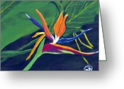 Kingston Greeting Cards - Bird of Paradise 2 AT Greeting Card by Angella Kingston