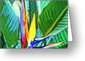 Hanalei Beach Greeting Cards - Bird of Paradise Greeting Card by Dominic Piperata