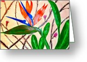 Tulip Art Botanical Art Painting Greeting Cards - Bird of Paradise Greeting Card by J Perez