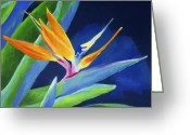 Pastels. Greeting Cards - Bird of Paradise Greeting Card by Stephen Anderson