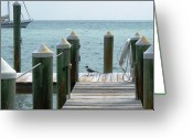 Boca Grande Prints Greeting Cards - Bird on the Pier Greeting Card by Geralyn Palmer