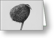 Monochrome Mixed Media Greeting Cards - Bird Greeting Card by Valdas Misevicius