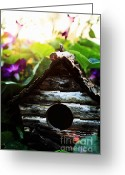 Sun Flare Greeting Cards - Birdhouse Greeting Card by Stephanie Frey