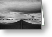 Black And White Photography Photo Greeting Cards - Birds Greeting Card by Bob Orsillo