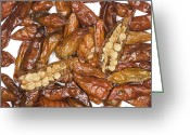 Birds Eye Greeting Cards - Birds Eye Chilli Peppers Greeting Card by Power And Syred
