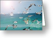 Botanicals Mixed Media Greeting Cards - Birds in Flight  Greeting Card by AdSpice Studios