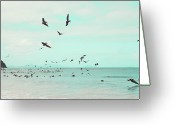 Caribbean Sea Greeting Cards - Birds In Flight Greeting Card by Kim Fearheiley Photography