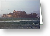 Alcatraz Greeting Cards - Birds In Free Flight At Alcatraz Greeting Card by Carl Deaville