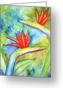 Carlin Greeting Cards - Birds of Paradise Greeting Card by Carlin Blahnik