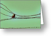 Abstract Sky Greeting Cards - Birds on a Wire Greeting Card by Amy Neal