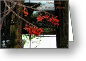 Winter Scenes Photo Greeting Cards - Bittersweet The Winter Flower Greeting Card by Julie Dant