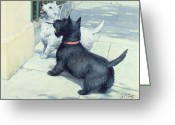 Hounds Greeting Cards - Black and White Dogs Greeting Card by Septimus Edwin Scott