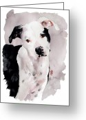 Bull Terrier Greeting Cards - Black and White Pit Greeting Card by Debra Jones