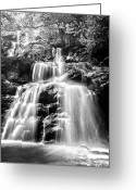 Virginia Pyrography Greeting Cards - Black and White Shenandoah Falls Greeting Card by Shane York