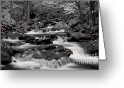 Empty Greeting Cards - Black and White stream at Ricketts Glen Greeting Card by Robert Wirth